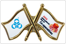 Two-Logo Pins (English)